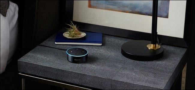 The Echo Dot