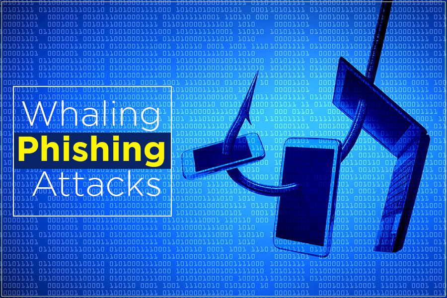 What is Whaling Phishing Attacks and How to Prevent it
