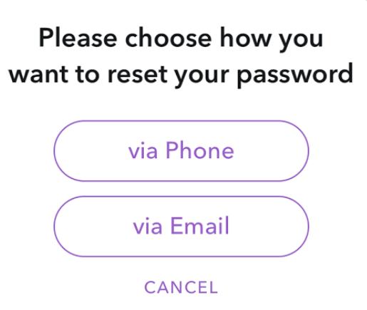 Choose option to reset snapchat password