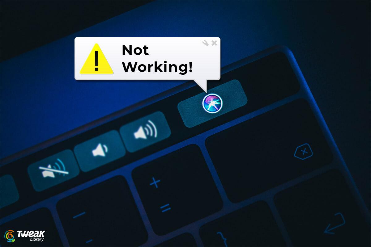 Here's How to Fix Siri Not Working on Mac