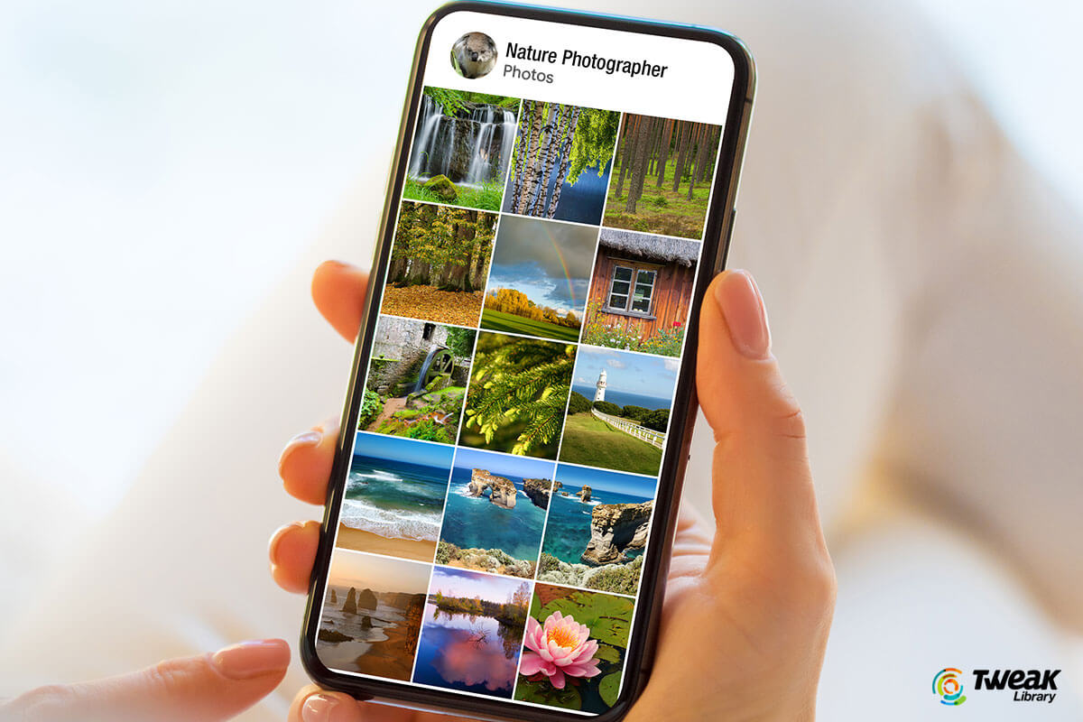 Best Google Photos Alternatives (Free and Paid)
