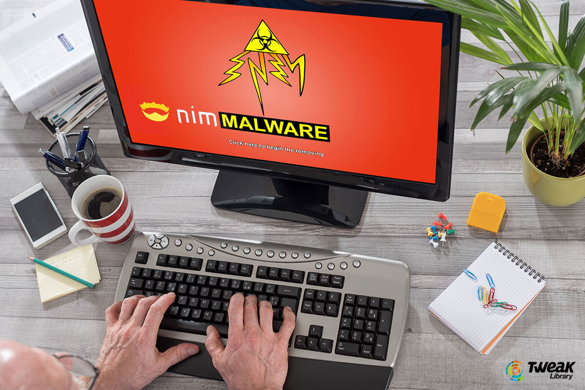 NimzaLoader Malware – How Strong Is Your Guard Against This Cyber-Attack